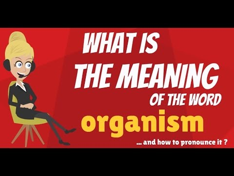 What is ORGANISM? What does ORGANISM mean? ORGANISM meaning, definition & explanation
