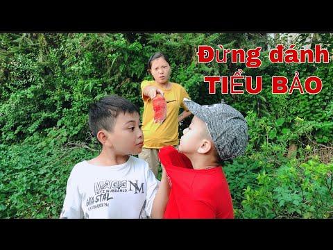 DTVN Vlog : (Tập 86) Bài học nhớ đời cho kẻ giám bắt nạt trẻ trâu ( ANH SẮN BẮT NẠT TIỂU BẢO ) | Tóm tắt những thông tin liên quan đến nu hiep si toc trang online chính xác
