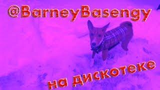 BarneyBasengy на дискотеке #0004