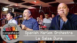 Spanish Harlem Orchestra performs La Salsa Dura