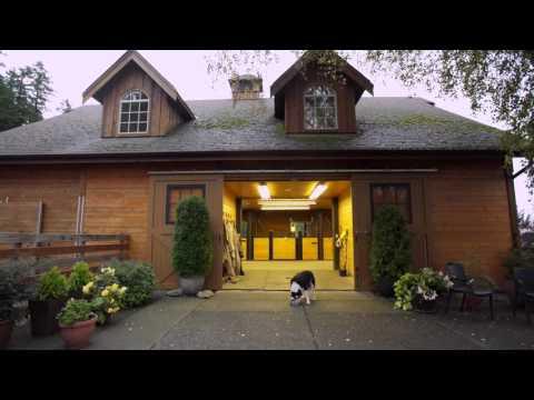 Sunrise Suite Vacation Rental Victoria B.C. Canada