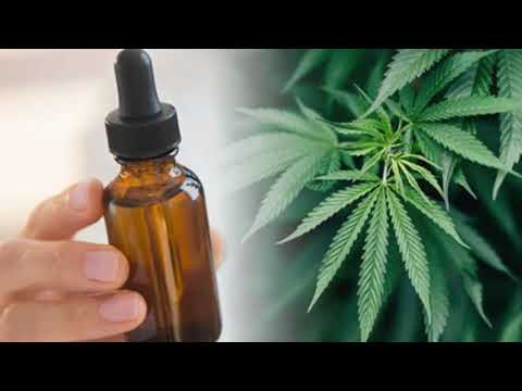What Are The Effects And Benefits of CBD Oil?