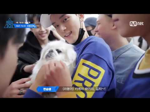 KPOP IDOLS With Their Pets! | So Adorable!