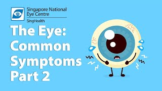 Common Eye Symptoms - Part 2