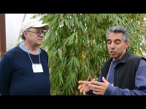 Marinations 77 Puerto Rico: Water is Life
