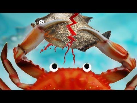 เกมที่เล่นเป็นปูแถมโหดกว่าปลาอีกหลายเท่า!! | Feed And Grow Let's Play (4)