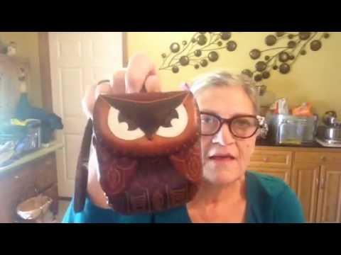 My New Handbag/Purse (Dooney And Bourke Clayton) And Owl Change Purse...