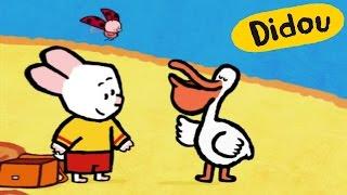 Pélican - Didou, dessine-moi un pélican  Dessins animés pour les enfants