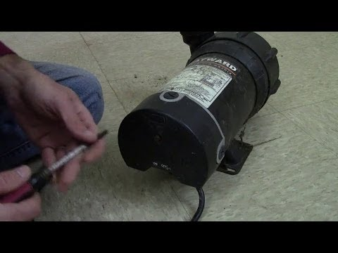 110v Plug Wiring Diagram In Series Above Ground Pool Pump Won T Start Or Is Humming Amp How To