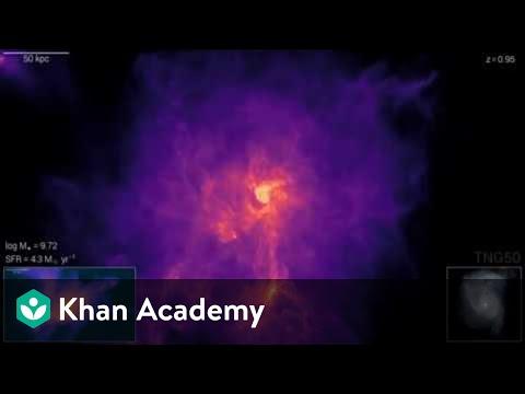 Scientific simulations: IllustrisTNG Single Galaxy Formation