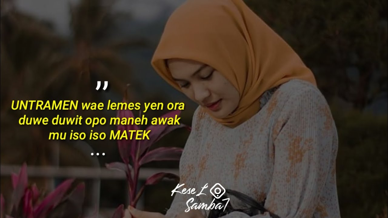 Cidro Storywa Lucu Quotes Jowo Ambyar Terbaru Story Wa Keren