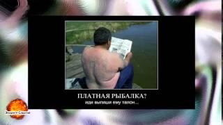 Смешное видео Приколы на рыбалке ВЫПУСК #4 демотиваторы(Самые смешные курьезы, приколи, и глупости которые могут случится с людьми, животными ,смотрите на нашем..., 2015-04-16T20:57:06.000Z)