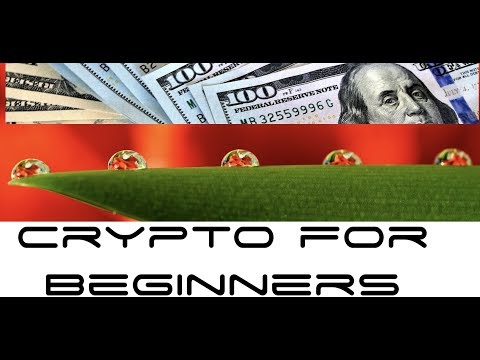$1,000 Investment in Cryptocurrency For Beginners