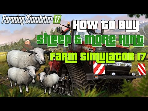 How to Buy Sheep and More Hint in Farming Simulator 2017
