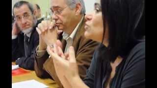 SJ - 40 anos de Jornalismo-  Informação formatada - Maria Flor Pedroso