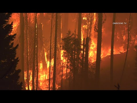 Creek Fire Burns Uncontrolled In The Huntington Lake Area