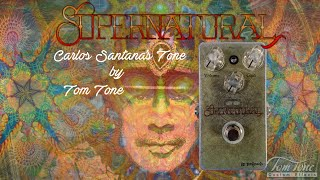 Tom Tone Supernatural - Carlos Santana's Tribute Played by Thiago Zalinsky