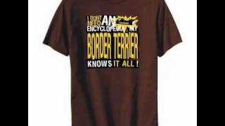 T-shirt  Border Terrier