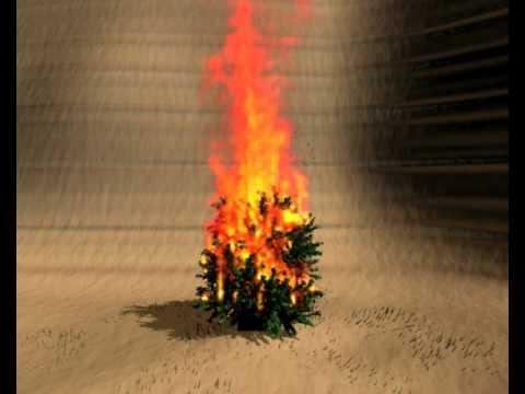 California burns: The