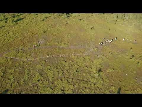 Hargita Trail Running 2017 Non-official video