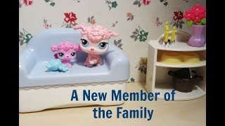 LPS: A New Member of the Family    LPS Movie    Sugar Diamond
