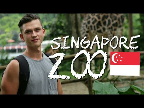 Travel to Singapore / THE ZOO IS AMAZING