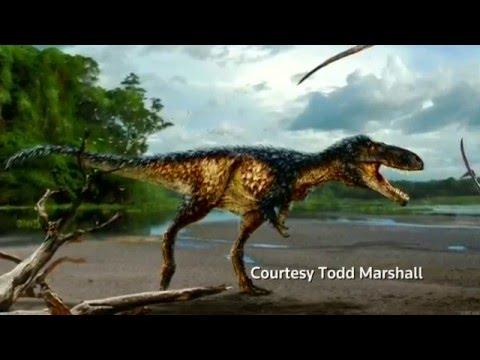 Meet Timurlengia - T. Rex's older cousin
