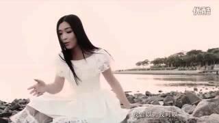 彭清《一亿个伤心》MV 女声独唱版 标清