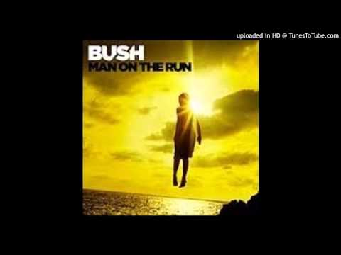 Bush -  Man on the Run - The Gift