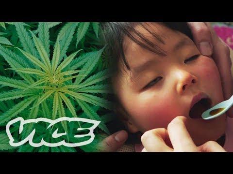 大麻で難病を治す「医療大麻」最前線 - Medicinal Marijuana in Japan