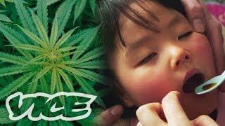 大麻で難病を治す「医療大麻」最前線 - Medicinal Marijuana in Japan thumbnail