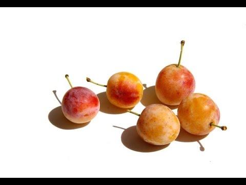 confiture-de-prunes-facile