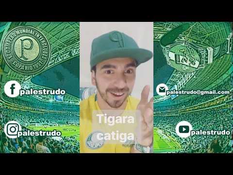 Tigaracatiga - Sport no Allianz - BR 2017