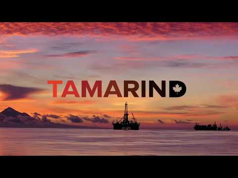 An Introduction to Tamarind Resources