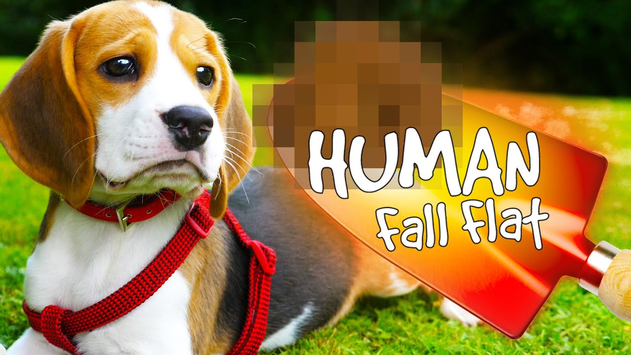 Human Fall Flat - The Dirty Dog Foul Trowel!