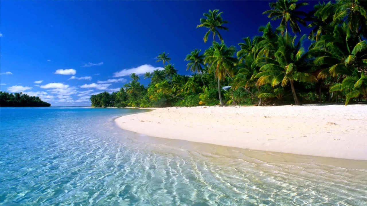moving beach backgrounds for wallpaper - photo #23