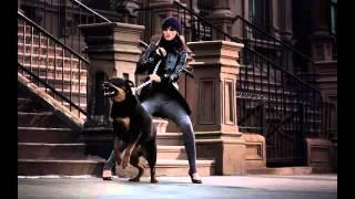 Mt (ykcb) Feat  Nor #nc - Rottweiler  |18+|