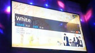 핑클(Fin.K.L) -  White(화이트) [vocal cover] 노래방