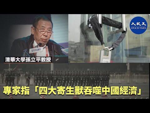 (字幕)專家指「四大寄生獸吞噬中國經濟」  #香港大紀元新唐人聯合新聞頻道