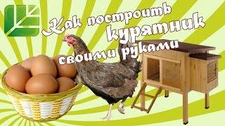 видео Как построить курятник? Как сделать сарай для кур? Как утеплить курятник и надо ли?