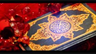 تحميل فيديو سورة الزمر الحصري تسجيلات الإذاعة المصرية