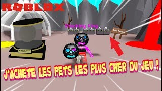 I BUY THE PETS THE MORE GAME CHER! Roblox Hat Simulator