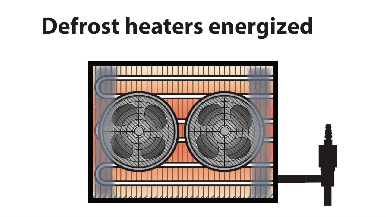 video 034 iced evaporator coil on walk in freezer faq walkin coolers walk in freezers  [ 1280 x 720 Pixel ]