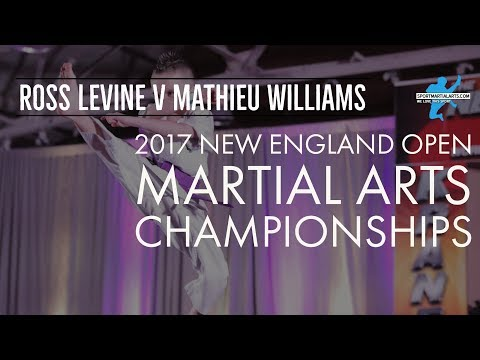 Ross Levine v Mathieu Williams | 2017 New England Open | Mens Point Sparring Eliminations