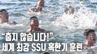 """[자막뉴스] """"추위야 물러가라""""…해군 SSU 부대 혹한기 훈련 / 연합뉴스TV (YonhapnewsTV)"""
