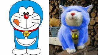 Doraemon Characters In Reallife