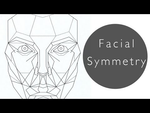 What Makes Us Attractive? How to Improve Facial Symmetry Nat