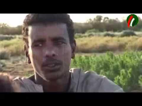 Nubia documentary film النوبيون  والتهجير..فيلم وثائقي