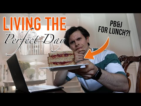 """I Lived the """"Optimal"""" Lifestyle for a Day 