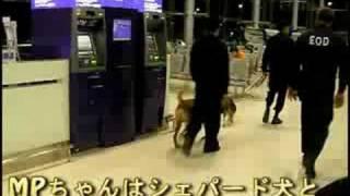 『北京オリンピック 2008』では、テロ防止策として空港でひそかに厳戒態...